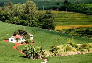 Imovel Rural